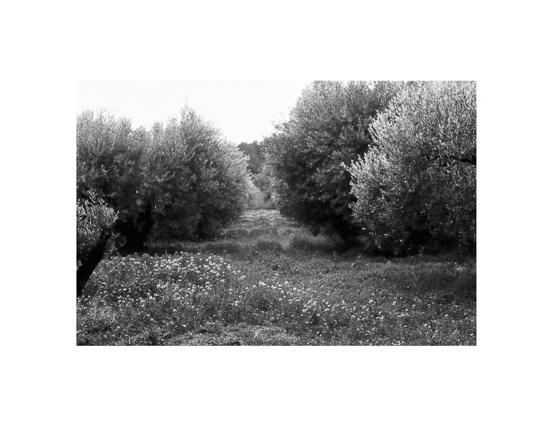 14120220-Acqueduc-romain-24x36-dans-40x50.jpg
